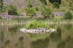 """Eine kleine Insel im """"Stöffelsee"""" 2"""