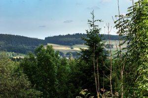 Blick von der Neukirch auf die Fuchskaute