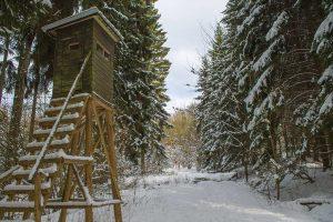 Nisterpfad im Winter