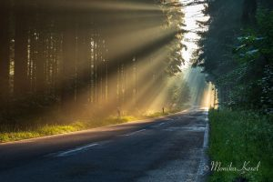 Sonnenstrahlen Morgens bei Sonnenaufgang